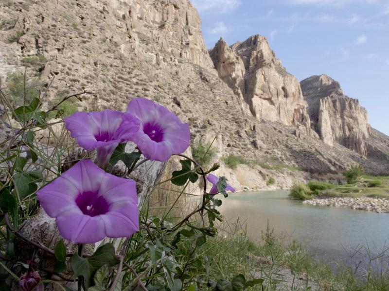 boquillas canyon canoe