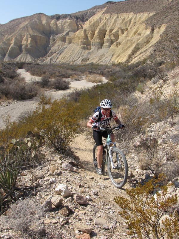Big Bend Guided Tours